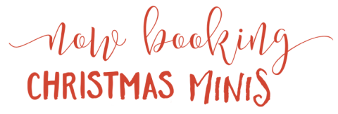 Now Booking Christmas Minis